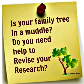 Is your family tree in a muddle